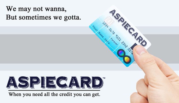 Aspiecard